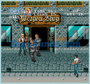 Double Dragon 3 на sega
