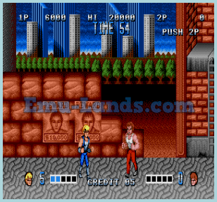 Double Dragon на sega